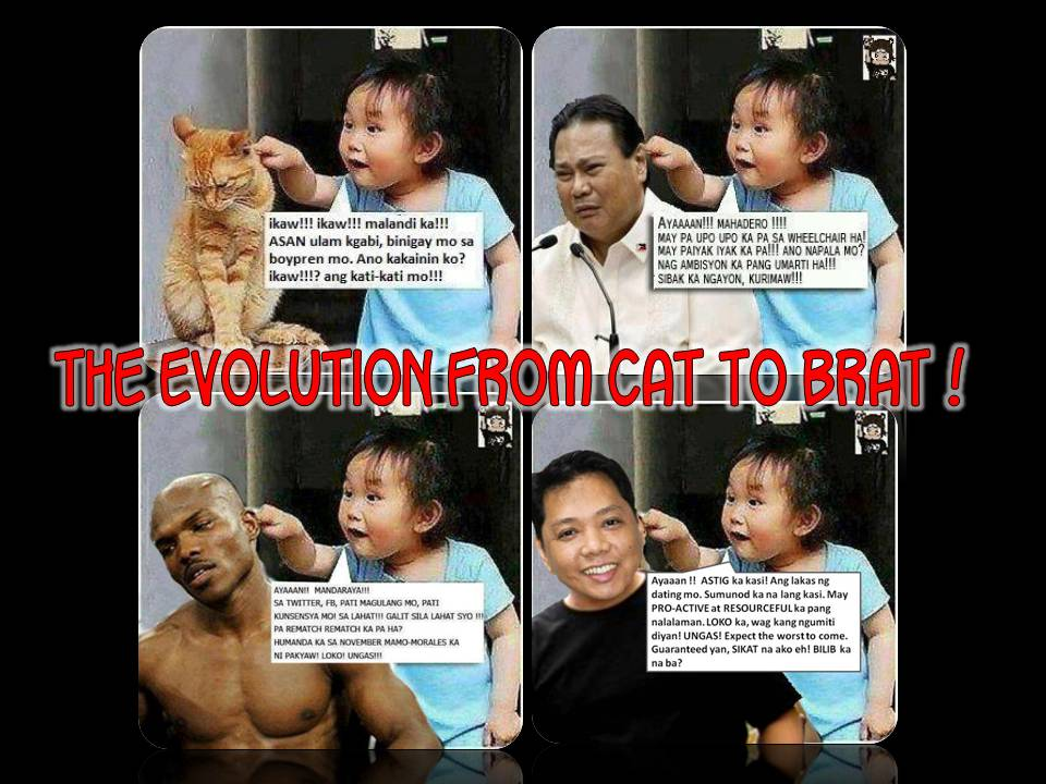 Funniest Meme Ever 2012 : Be proud of us pinoys: the evolution from cat to brat
