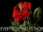 rose thor